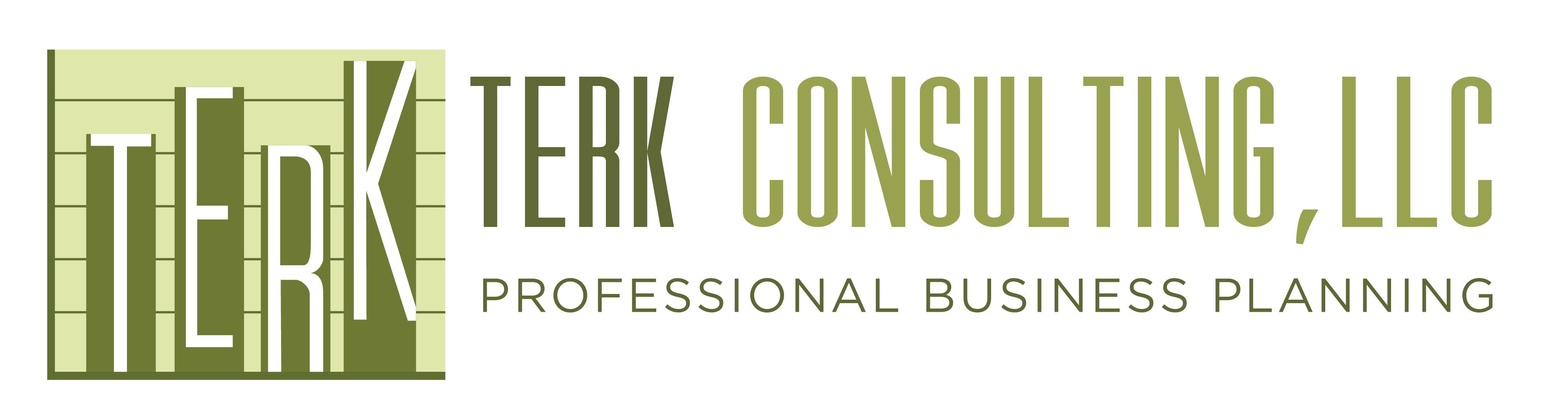 terk consulting business plans